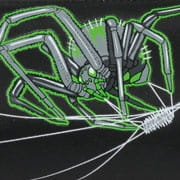 DerDieDas Green Spider