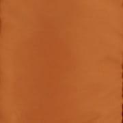 Burton Ascent Orange
