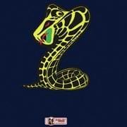 McNeill Snake
