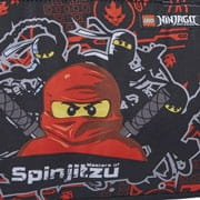 Lego Ninjago Team Ninja