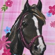 Scooli Horse Champion