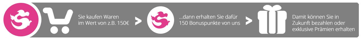 bonuspunkte_howto