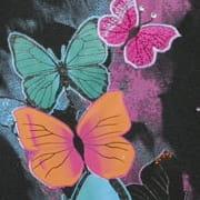 Walker Butterfly